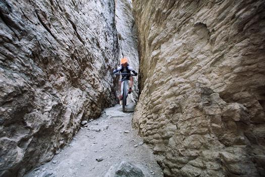 Vendita e Riparazione Mountain Bike Nuova Corti